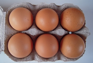 medium hen-eggs