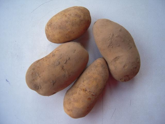 baking potatoes (remarka)