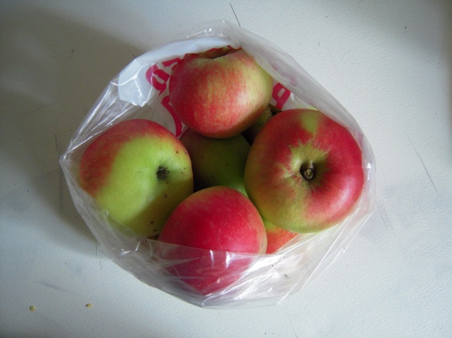 discovery apples1