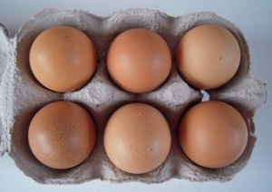 small hen-eggs