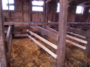 One of our cow beds, ready for winter.