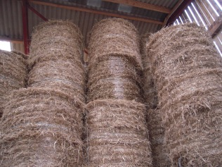 Straw store for bedding up the animals in winter.