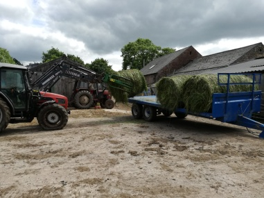 Bales of silage being wrapped for storage