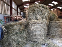 Some of the unwrapped bales