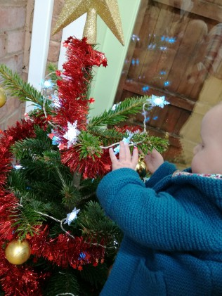 Caitlin checking out the Christmas tree